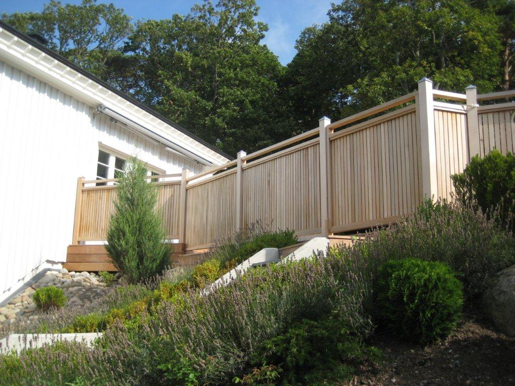 cederträ staket